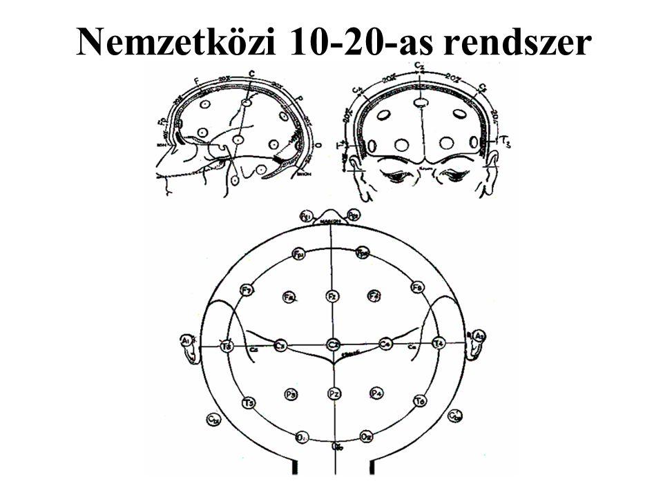 Az EEG-s mérés elve