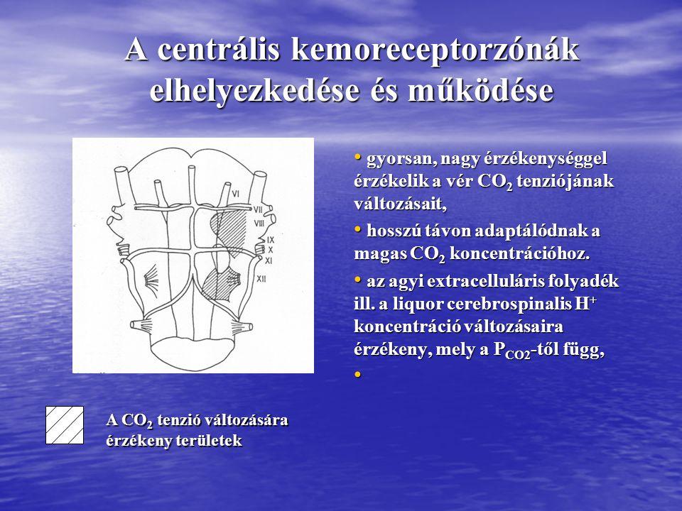 Kapilláris permeabilitás és centrális kemoreceptorműködés Kapilláris membrán permeábilis permeábilis – CO 2 -re impermeábilis impermeábilis – H + -ra – HCO 3 - -ra inger inger