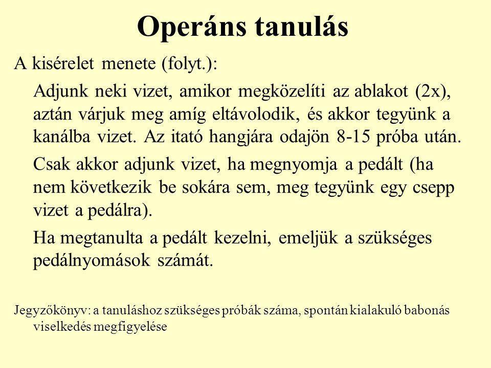 Operáns tanulás A kisérelet menete (folyt.): Adjunk neki vizet, amikor megközelíti az ablakot (2x), aztán várjuk meg amíg eltávolodik, és akkor tegyün