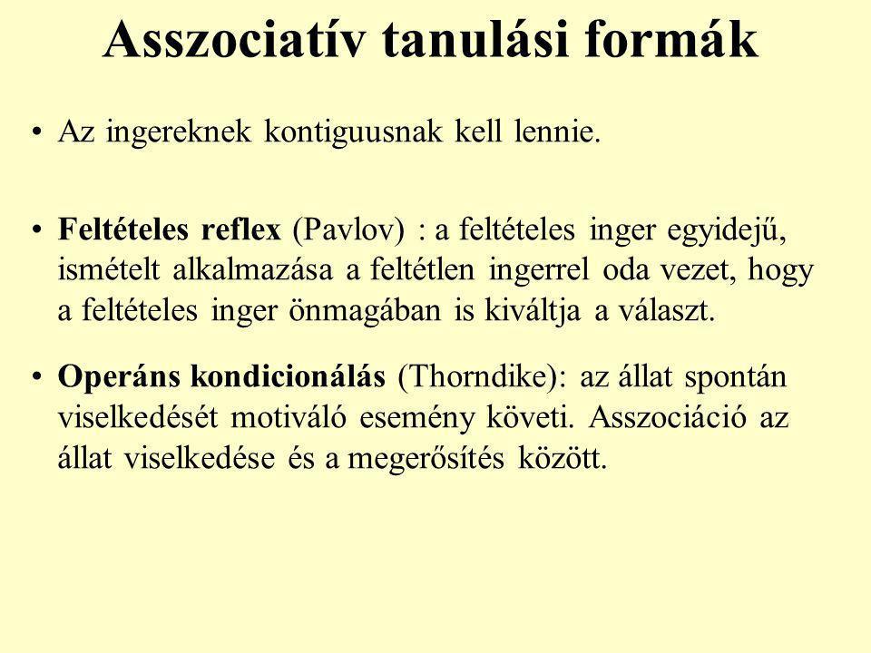 Asszociatív tanulási formák Az ingereknek kontiguusnak kell lennie. Feltételes reflex (Pavlov) : a feltételes inger egyidejű, ismételt alkalmazása a f