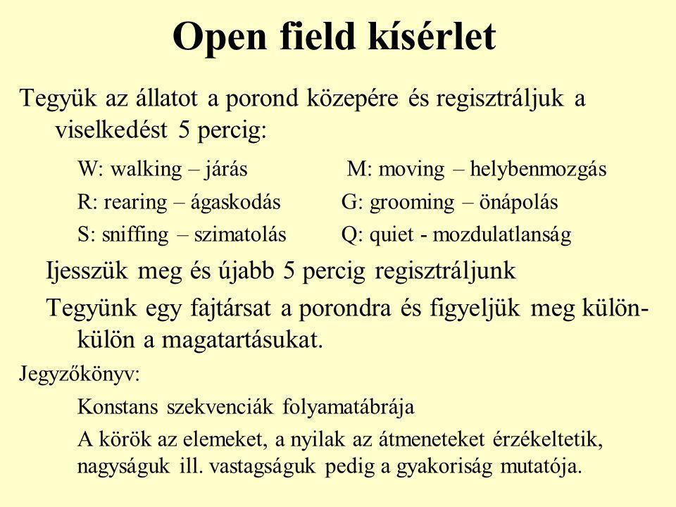 Open field kísérlet Tegyük az állatot a porond közepére és regisztráljuk a viselkedést 5 percig: W: walking – járás M: moving – helybenmozgás R: reari
