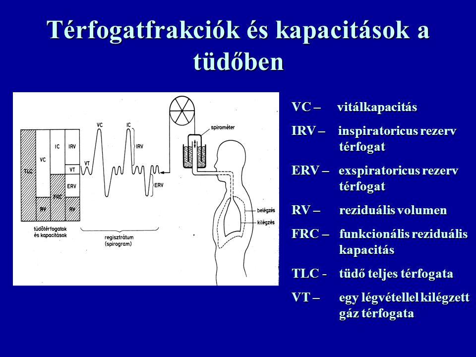 Térfogatfrakciók és kapacitások a tüdőben VC – vitálkapacitás IRV – inspiratoricus rezerv térfogat ERV – exspiratoricus rezerv térfogat RV – reziduális volumen FRC – funkcionális reziduális kapacitás TLC -tüdő teljes térfogata VT – egy légvétellel kilégzett gáz térfogata