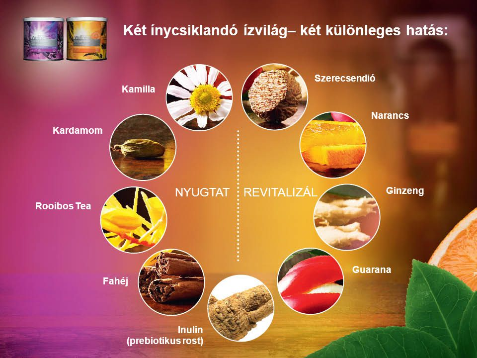 Két ínycsiklandó ízvilág– két különleges hatás: Kamilla Kardamom Rooibos Tea Fahéj Inulin (prebiotikus rost) Szerecsendió Narancs Ginzeng Guarana NYUGTATREVITALIZÁL