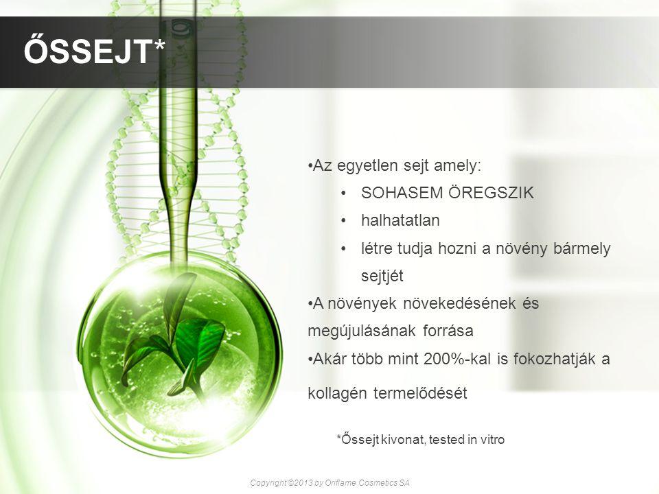 Az egyetlen sejt amely: SOHASEM ÖREGSZIK halhatatlan létre tudja hozni a növény bármely sejtjét A növények növekedésének és megújulásának forrása Akár
