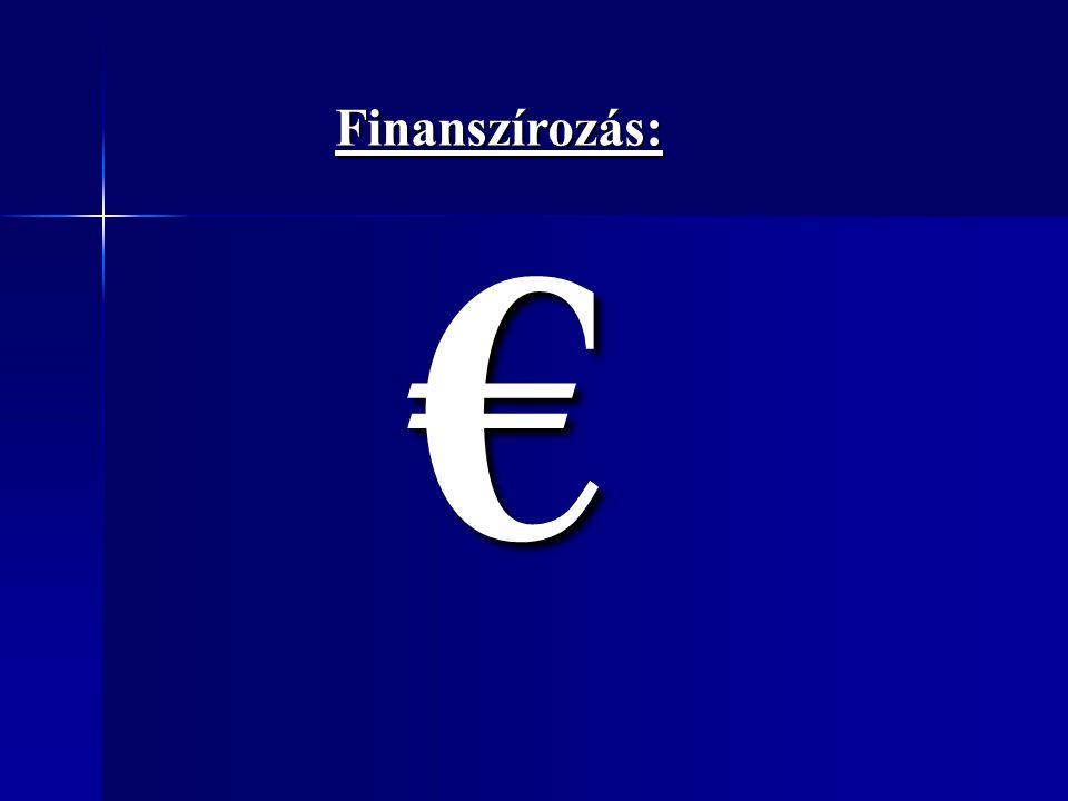 Finanszírozás:€