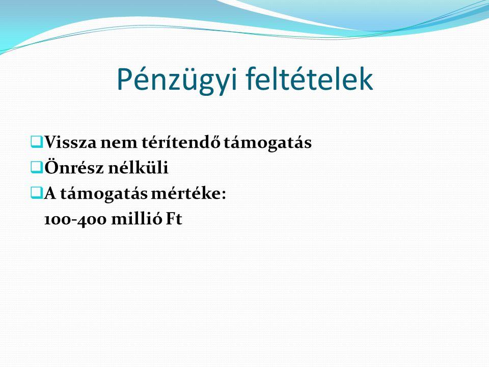 Pénzügyi feltételek  Vissza nem térítendő támogatás  Önrész nélküli  A támogatás mértéke: 100-400 millió Ft