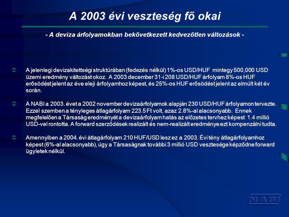 A 2003 évi veszteség fő okai  A jelenlegi devizakitettségi struktúrában (fedezés nélkül) 1%-os USD/HUF mintegy 500,000 USD üzemi eredmény változást okoz.