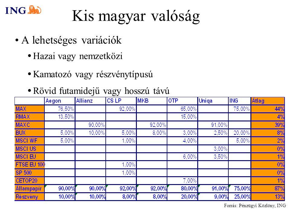 Kis magyar valóság A lehetséges variációk  Hazai vagy nemzetközi  Kamatozó vagy részvénytípusú  Rövid futamidejű vagy hosszú távú Forrás: Pénzügyi Közlöny, ING