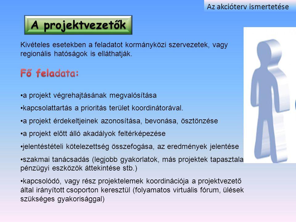 A projektvezetők Az akcióterv ismertetése