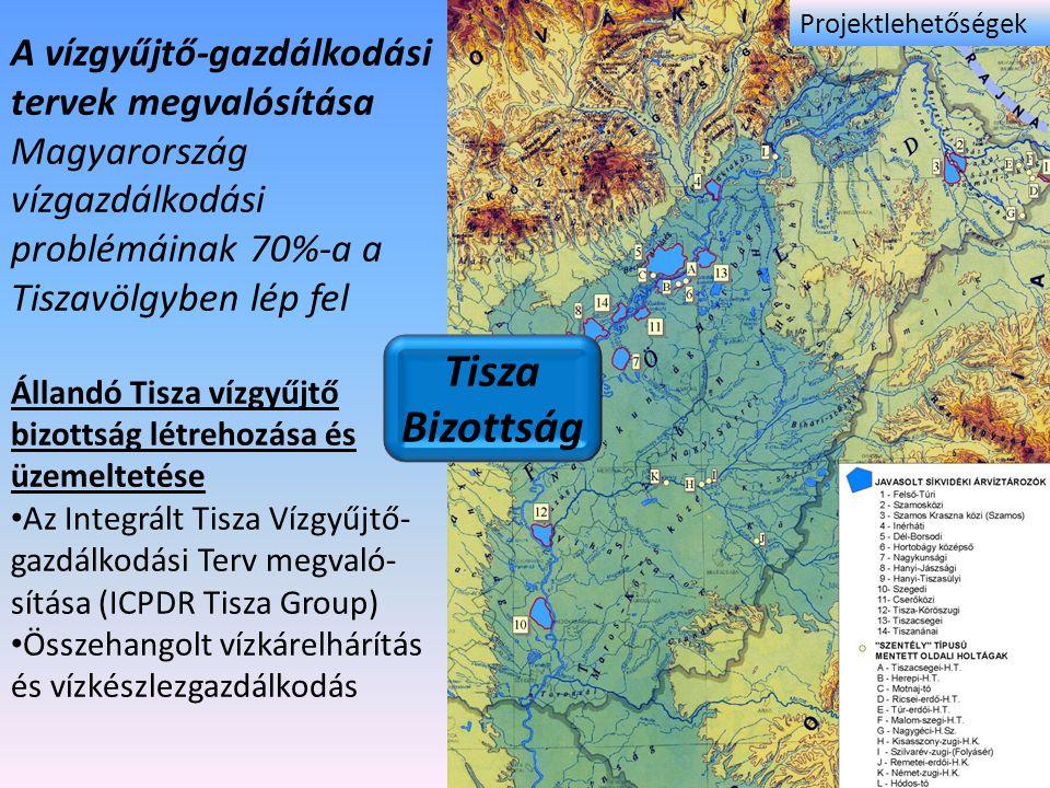 A vízgyűjtő-gazdálkodási tervek megvalósítása Magyarország vízgazdálkodási problémáinak 70%-a a Tiszavölgyben lép fel Állandó Tisza vízgyűjtő bizottsá