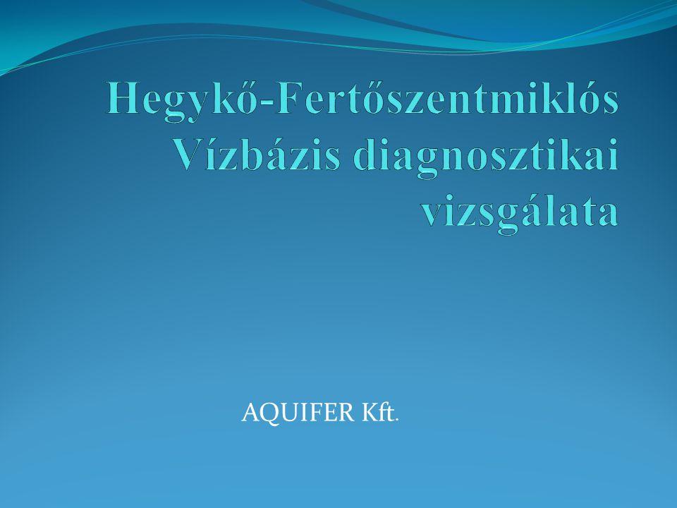 A diagnosztikai vizsgálat célja: a vízbázis megismerése a lehetőségek szerinti legteljesebb mértékben