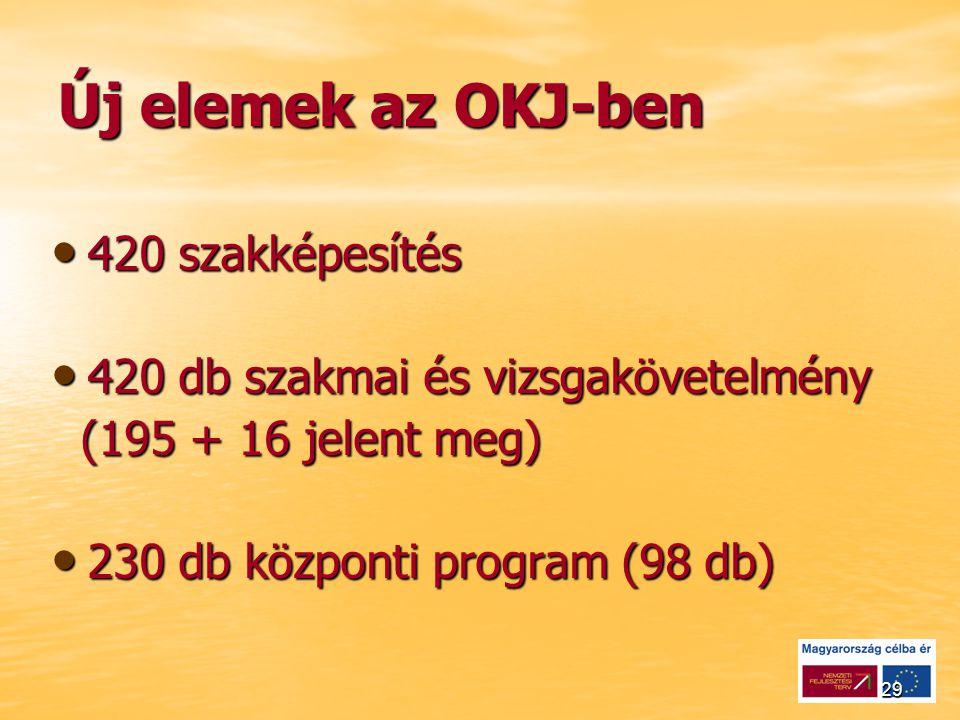 29 Új elemek az OKJ-ben 420 szakképesítés 420 szakképesítés 420 db szakmai és vizsgakövetelmény 420 db szakmai és vizsgakövetelmény (195 + 16 jelent meg) (195 + 16 jelent meg) 230 db központi program (98 db) 230 db központi program (98 db)