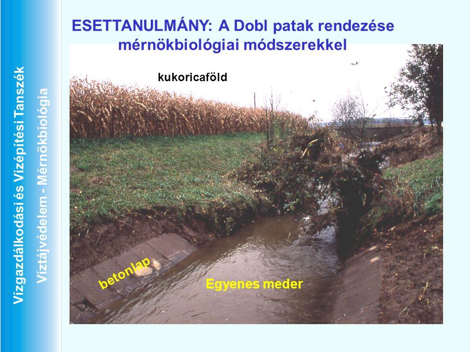 Vízgazdálkodási és Vízépítési Tanszék Víztájvédelem - Mérnökbiológia ESETTANULMÁNY: A Dobl patak rendezése mérnökbiológiai módszerekkel betonlap kukor