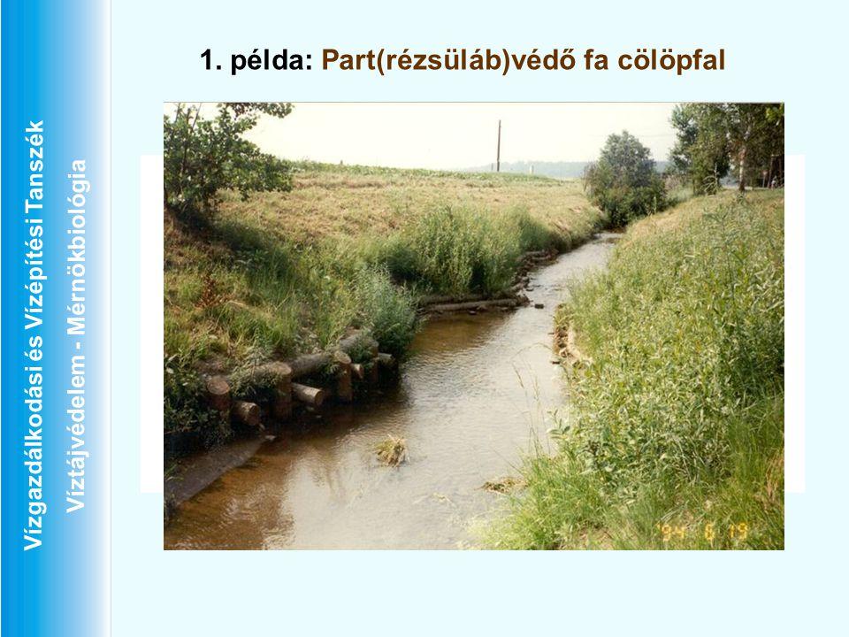 Vízgazdálkodási és Vízépítési Tanszék Víztájvédelem - Mérnökbiológia 1. példa: Part(rézsüláb)védő fa cölöpfal