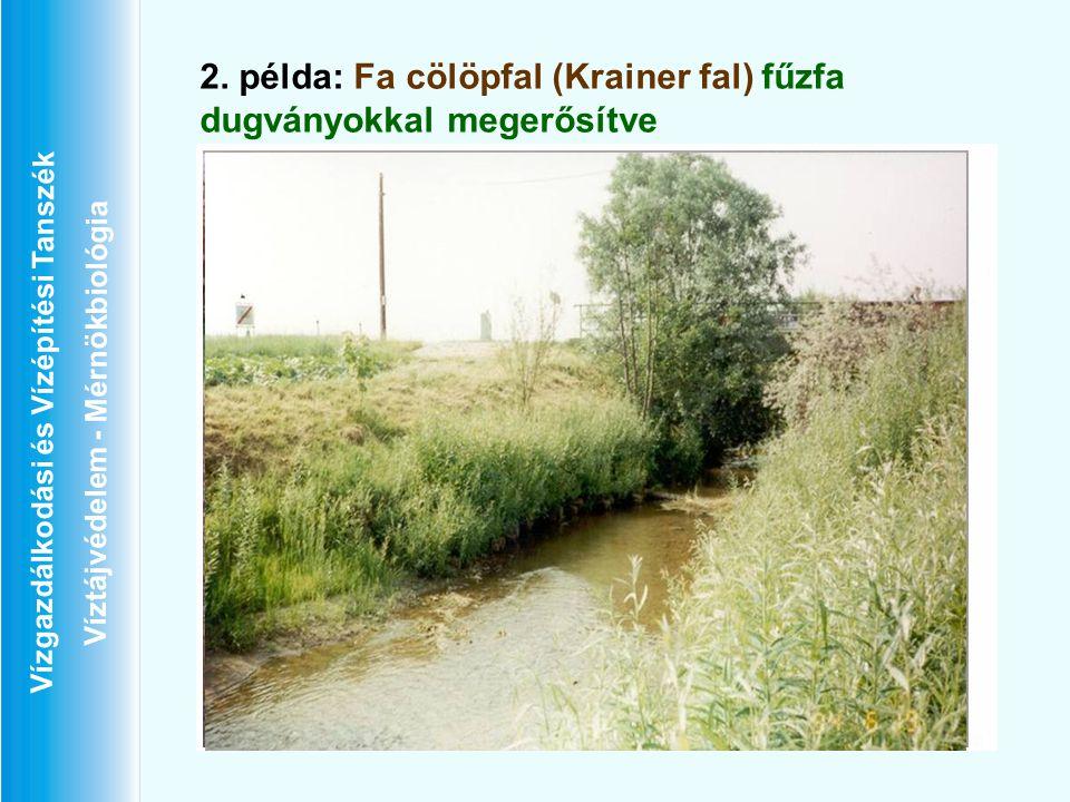 Vízgazdálkodási és Vízépítési Tanszék Víztájvédelem - Mérnökbiológia 2. példa: Fa cölöpfal (Krainer fal) fűzfa dugványokkal megerősítve