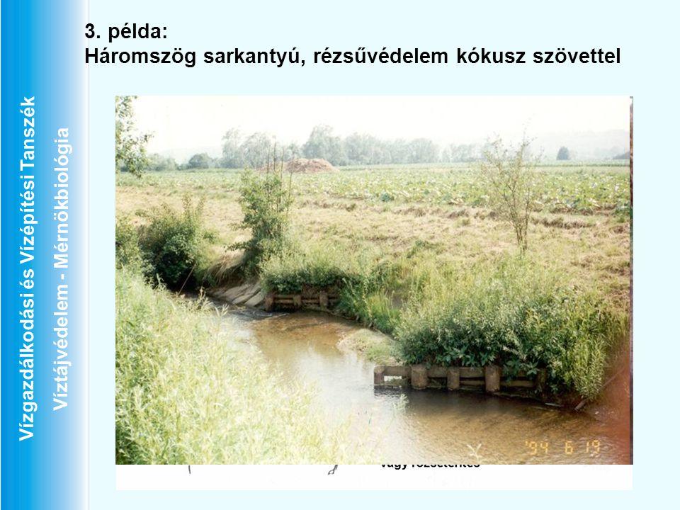 Vízgazdálkodási és Vízépítési Tanszék Víztájvédelem - Mérnökbiológia 3. példa: Háromszög sarkantyú, rézsűvédelem kókusz szövettel