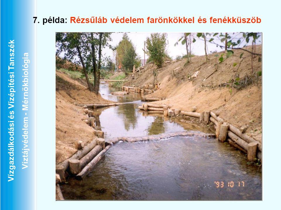Vízgazdálkodási és Vízépítési Tanszék Víztájvédelem - Mérnökbiológia 7. példa: Rézsűláb védelem farönkökkel és fenékküszöb