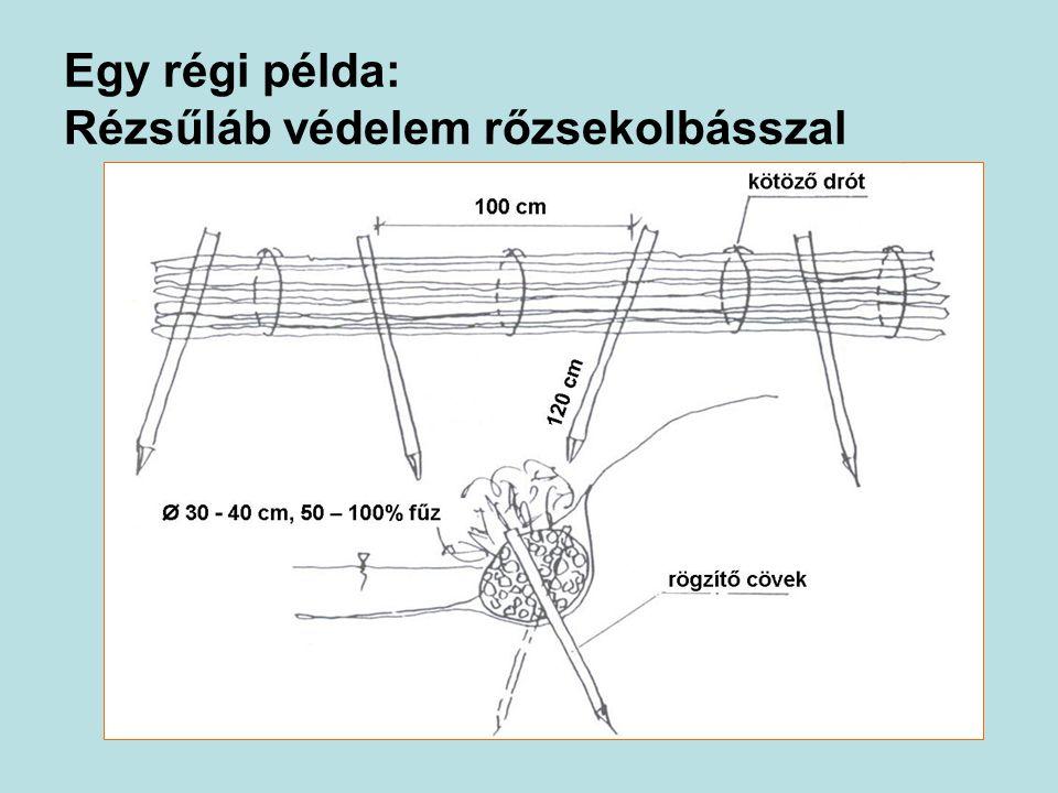 Egy régi példa: Rézsűláb védelem rőzsekolbásszal