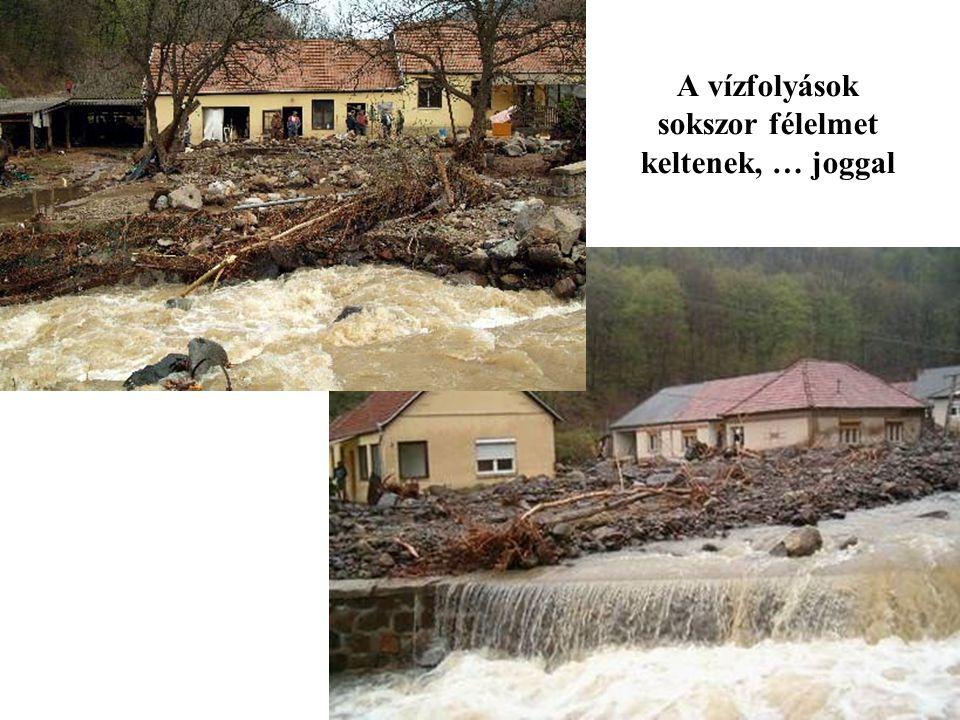 Vízgazdálkodási és Vízépítési Tanszék Víztájvédelem - Mérnökbiológia 2.