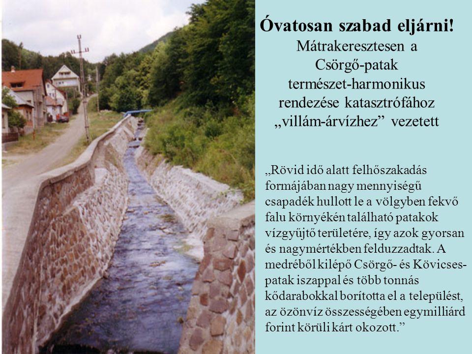 Vízgazdálkodási és Vízépítési Tanszék Víztájvédelem - Mérnökbiológia 3.
