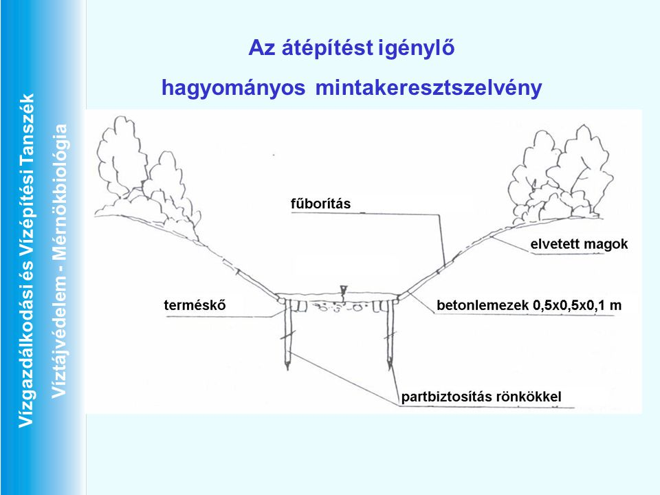 Vízgazdálkodási és Vízépítési Tanszék Víztájvédelem - Mérnökbiológia Az átépítést igénylő hagyományos mintakeresztszelvény