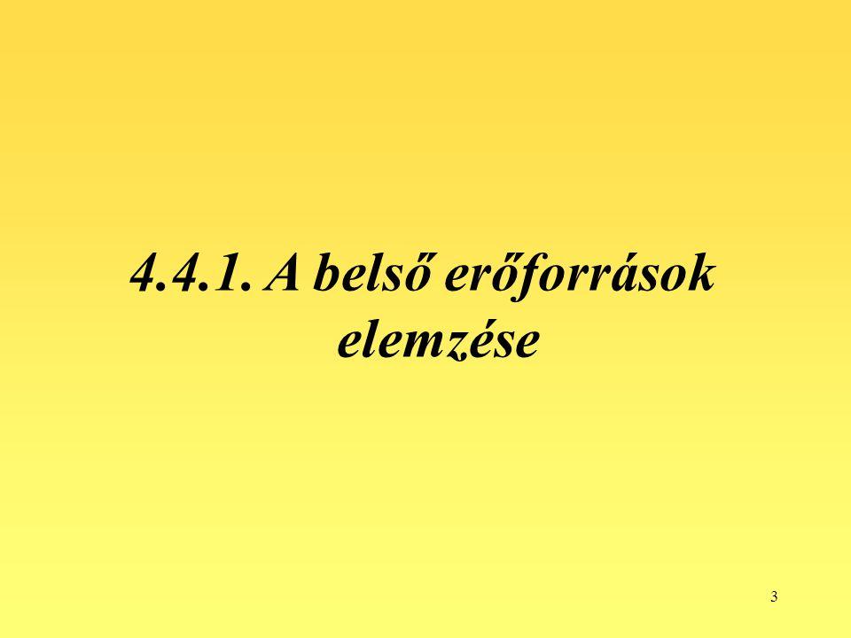 3 4.4.1. A belső erőforrások elemzése
