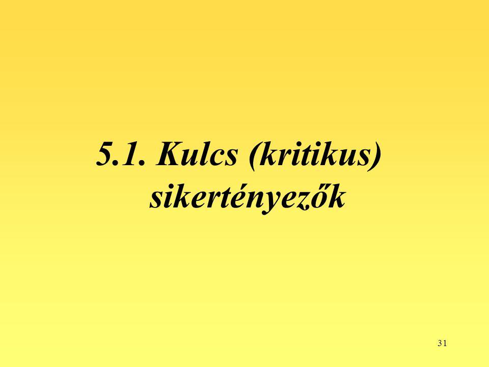 31 5.1. Kulcs (kritikus) sikertényezők