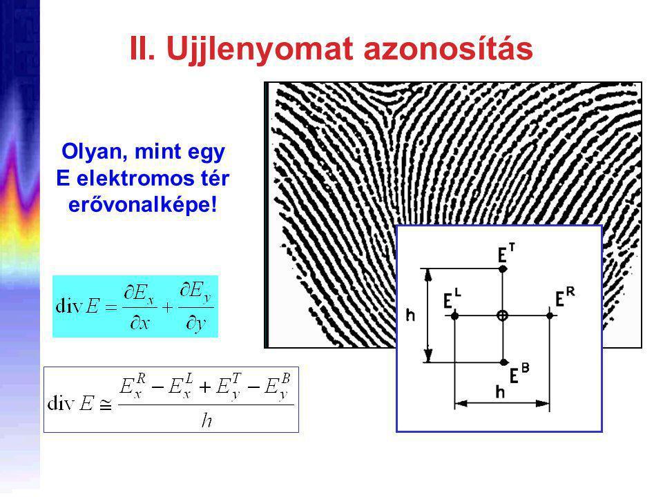 II. Ujjlenyomat azonosítás Olyan, mint egy E elektromos tér erővonalképe!