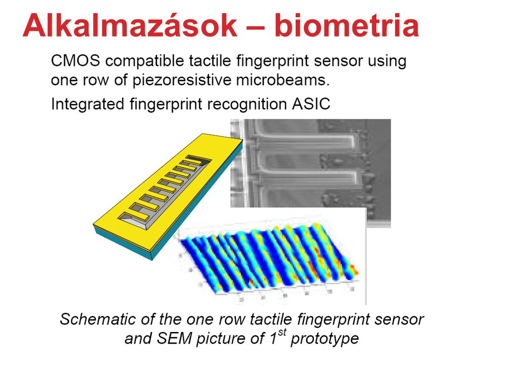 Alkalmazások – biometria