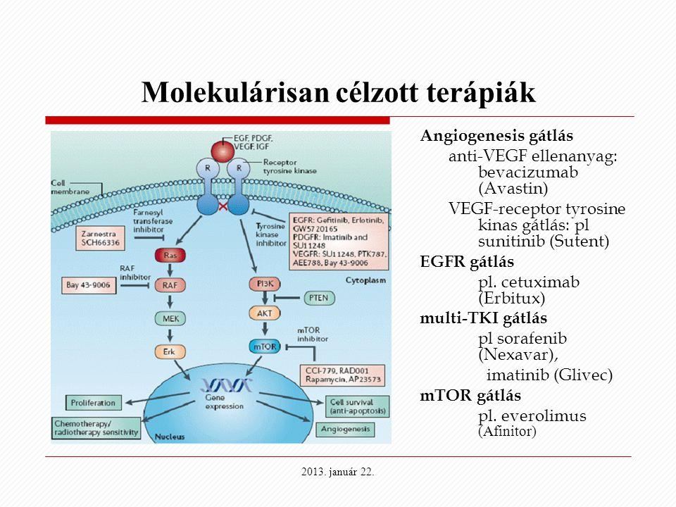 Molekulárisan célzott terápiák Angiogenesis gátlás anti-VEGF ellenanyag: bevacizumab (Avastin) VEGF-receptor tyrosine kinas gátlás: pl sunitinib (Sute