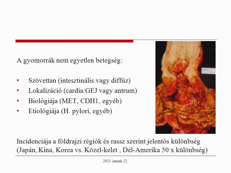 A gyomorrák nem egyetlen betegség: Szövettan (intesztinális vagy diffúz) Lokalizáció (cardia/GEJ vagy antrum) Biológiája (MET, CDH1, egyéb) Etiológiáj