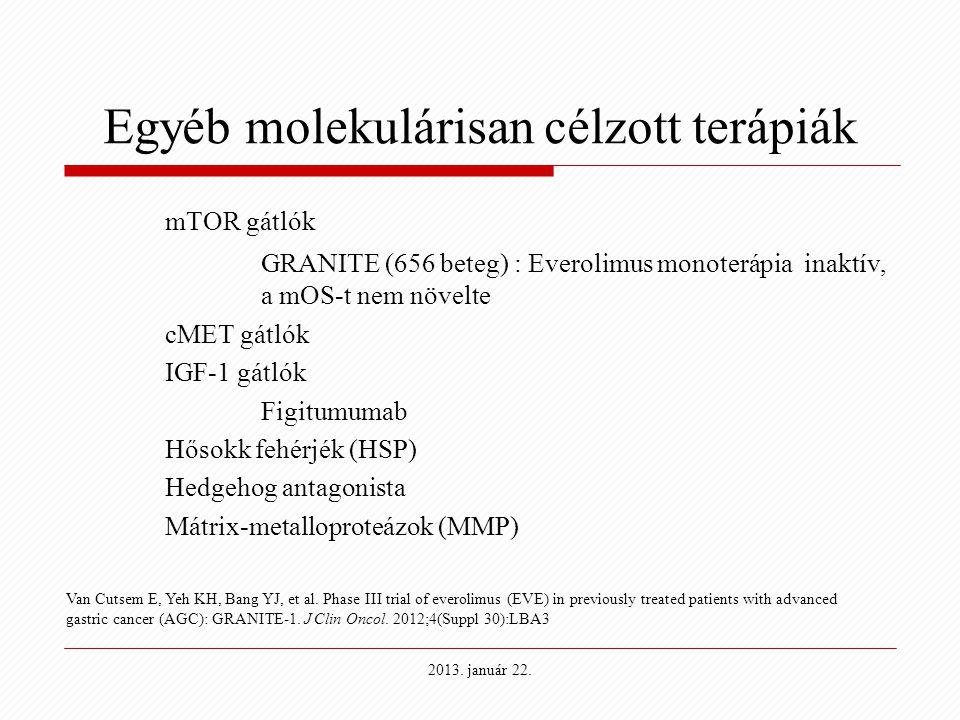 Egyéb molekulárisan célzott terápiák mTOR gátlók GRANITE (656 beteg) : Everolimus monoterápia inaktív, a mOS-t nem növelte cMET gátlók IGF-1 gátlók Fi