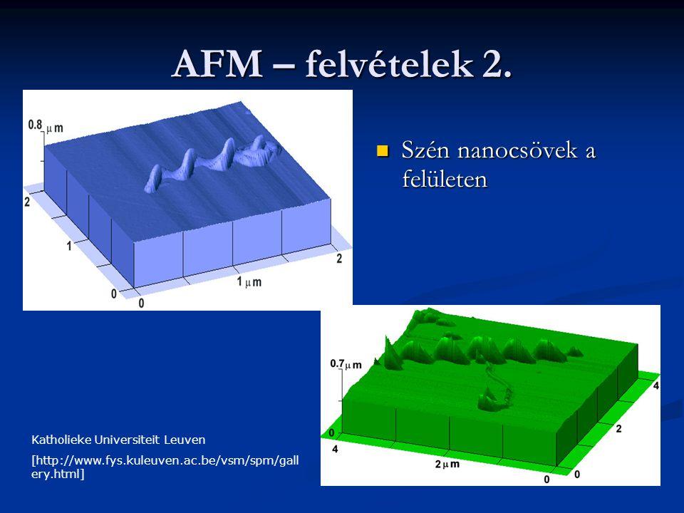 AFM – felvételek 2. Szén nanocsövek a felületen Szén nanocsövek a felületen Katholieke Universiteit Leuven [http://www.fys.kuleuven.ac.be/vsm/spm/gall