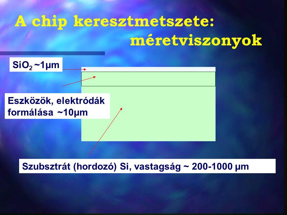 A chip keresztmetszete: méretviszonyok Szubsztrát (hordozó) Si, vastagság ~ 200-1000 μm SiO 2 ~1μm Eszközök, elektródák formálása ~10μm