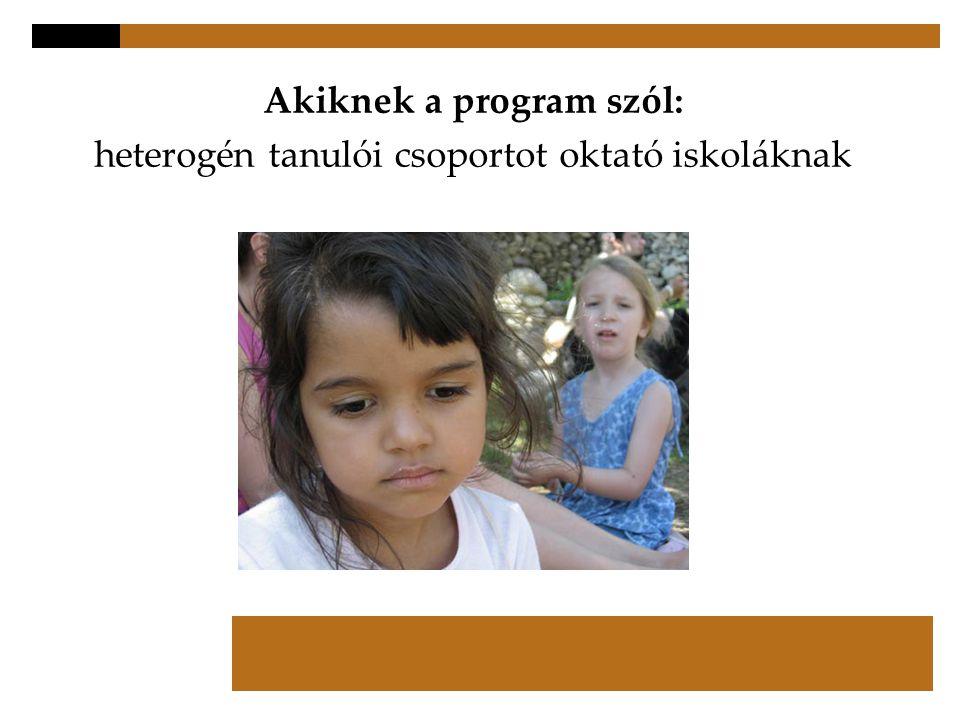Akiknek a program szól: heterogén tanulói csoportot oktató iskoláknak