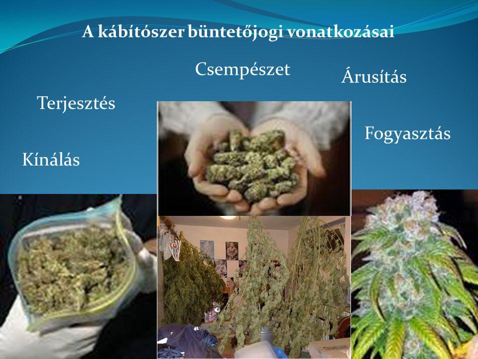 A kábítószer büntetőjogi vonatkozásai Terjesztés Kínálás Árusítás Csempészet Fogyasztás