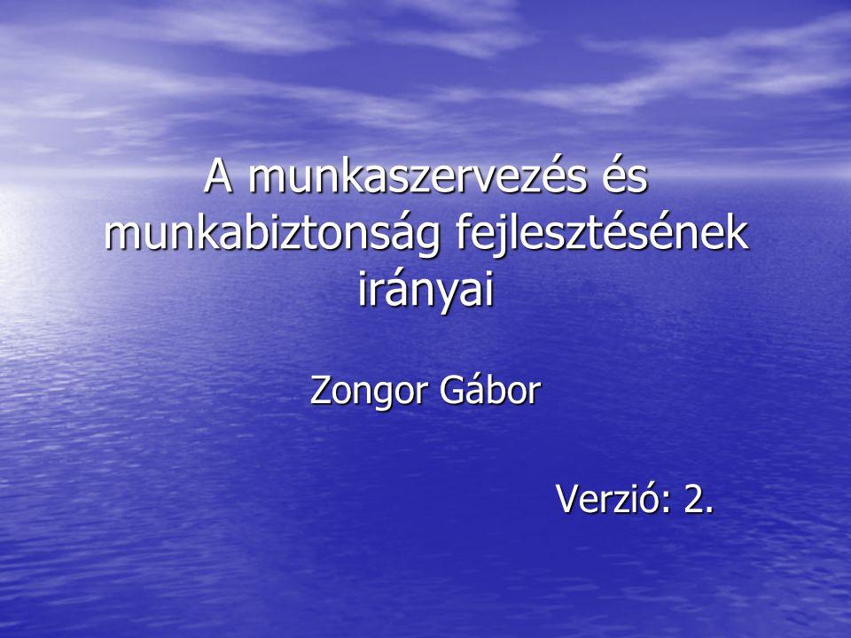 A munkaszervezés és munkabiztonság fejlesztésének irányai Zongor Gábor Verzió: 2.