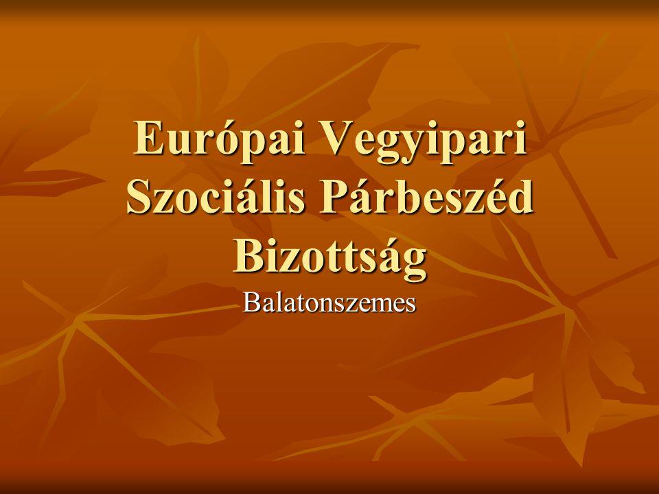 Európai Vegyipari Szociális Párbeszéd Bizottság Balatonszemes