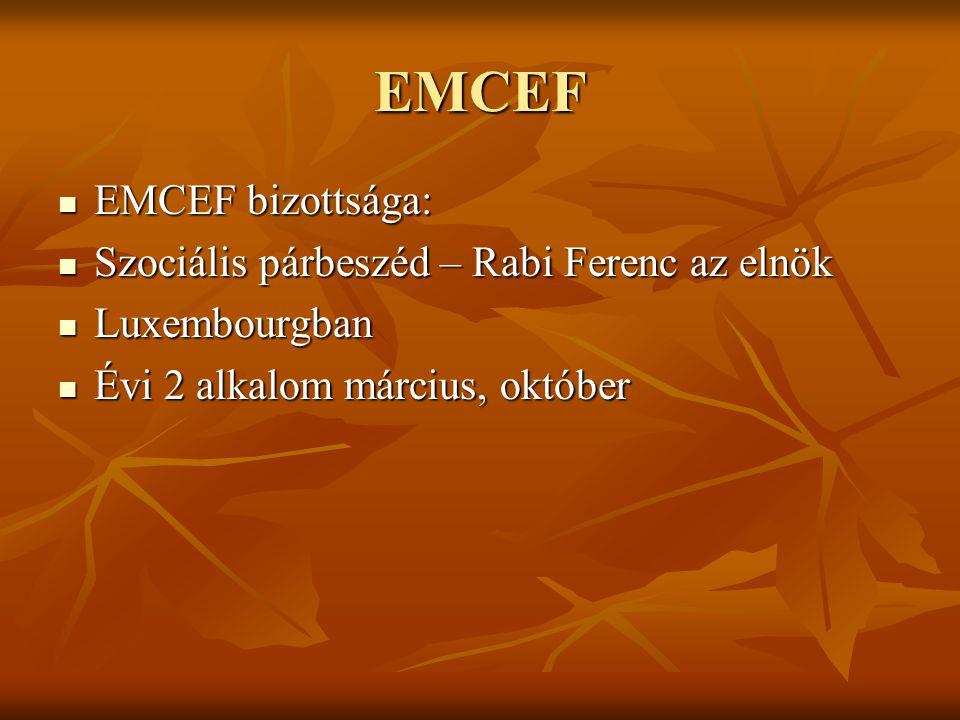 EMCEF EMCEF bizottsága: EMCEF bizottsága: Szociális párbeszéd – Rabi Ferenc az elnök Szociális párbeszéd – Rabi Ferenc az elnök Luxembourgban Luxembourgban Évi 2 alkalom március, október Évi 2 alkalom március, október