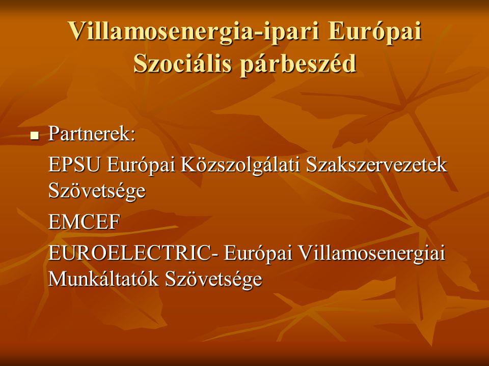 Villamosenergia-ipari Európai Szociális párbeszéd Partnerek: Partnerek: EPSU Európai Közszolgálati Szakszervezetek Szövetsége EMCEF EUROELECTRIC- Európai Villamosenergiai Munkáltatók Szövetsége