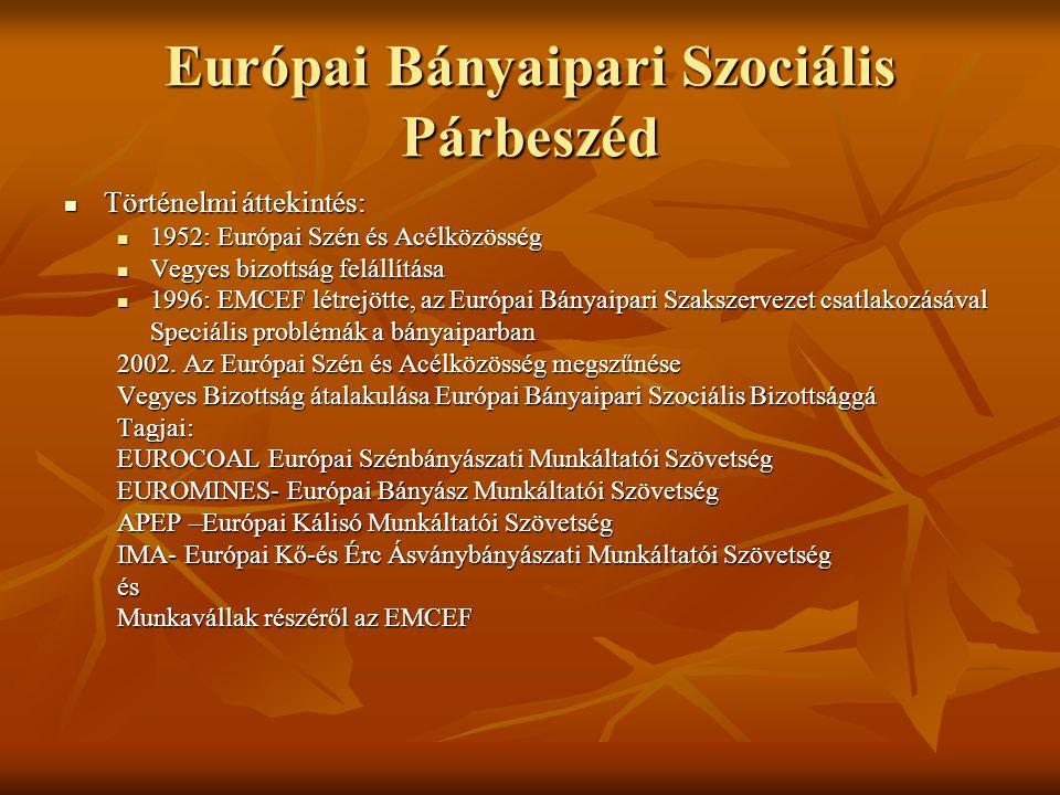 Európai Bányaipari Szociális Párbeszéd Történelmi áttekintés: Történelmi áttekintés: 1952: Európai Szén és Acélközösség 1952: Európai Szén és Acélközösség Vegyes bizottság felállítása Vegyes bizottság felállítása 1996: EMCEF létrejötte, az Európai Bányaipari Szakszervezet csatlakozásával 1996: EMCEF létrejötte, az Európai Bányaipari Szakszervezet csatlakozásával Speciális problémák a bányaiparban 2002.