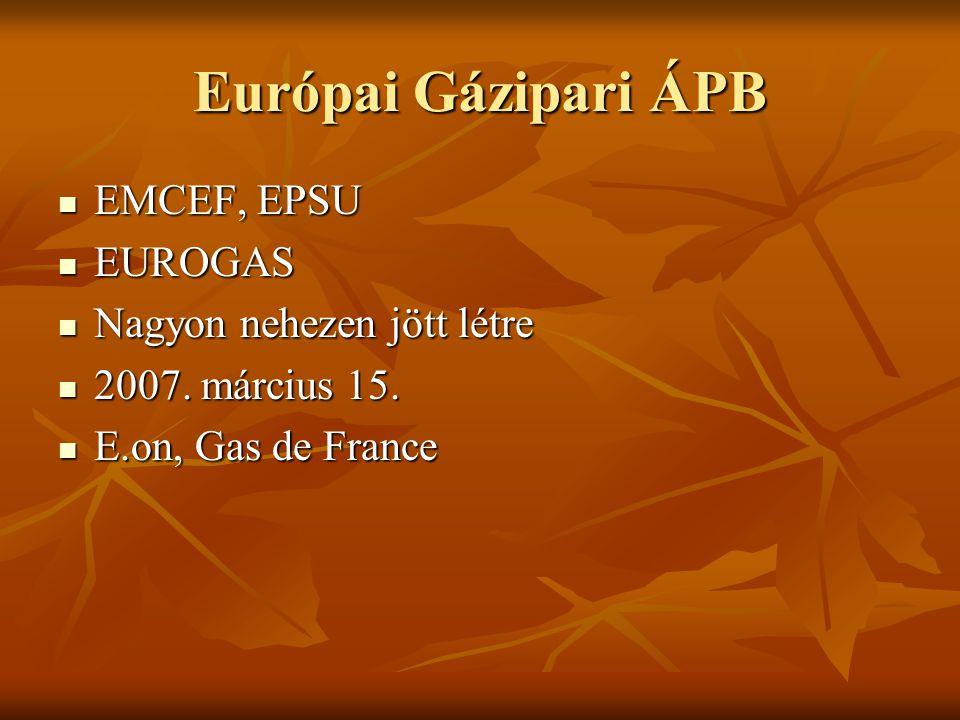 Európai Gázipari ÁPB EMCEF, EPSU EMCEF, EPSU EUROGAS EUROGAS Nagyon nehezen jött létre Nagyon nehezen jött létre 2007.