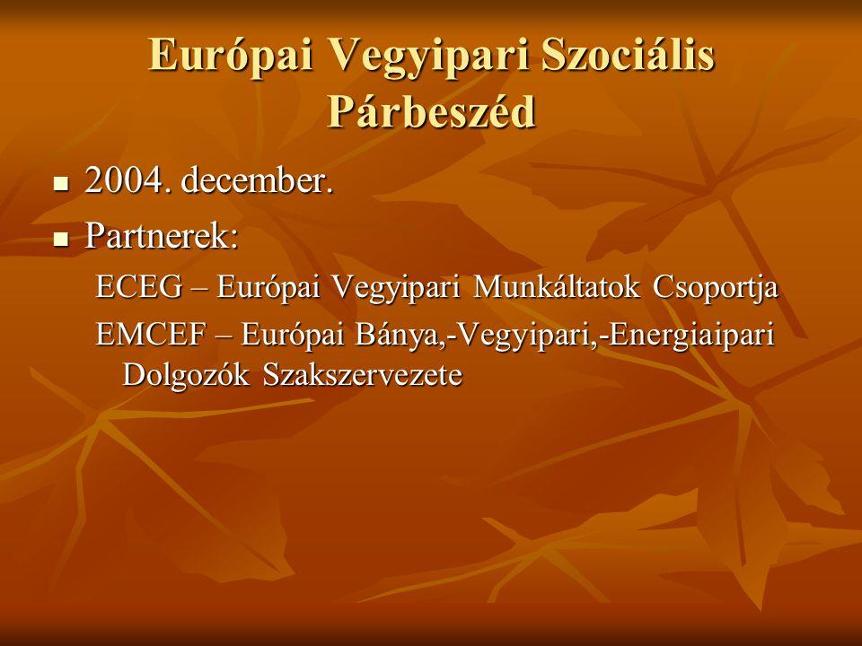 Európai Vegyipari Szociális Párbeszéd 2004. december.