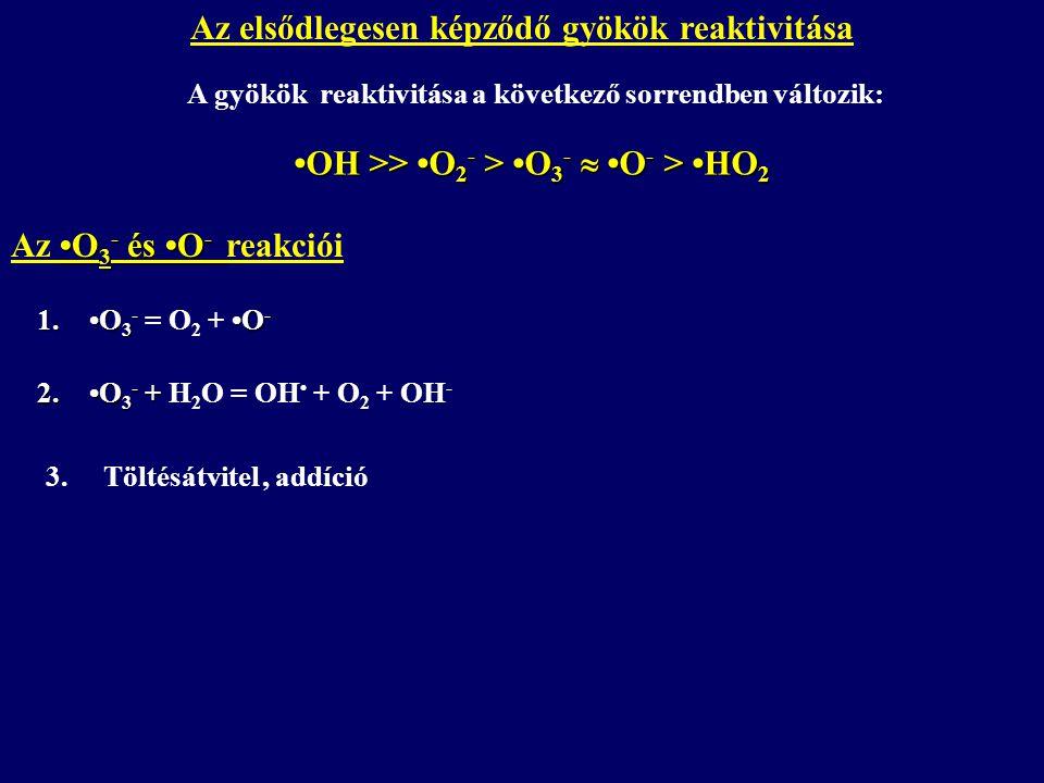 Az elsődlegesen képződő gyökök reaktivitása A gyökök reaktivitása a következő sorrendben változik: OH >> O 2 - > O 3 -  O - > HO 2 O 3 - és O - Az O 3 - és O - reakciói 1.O 3 - O - 1.O 3 - = O 2 + O - 2.O 3 - + 2.O 3 - + H 2 O = OH + O 2 + OH - 3.