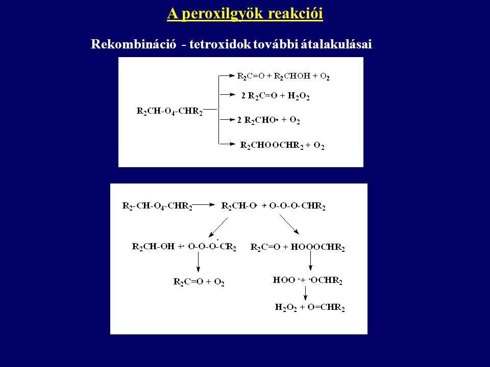 A peroxilgyök reakciói Rekombináció - tetroxidok további átalakulásai
