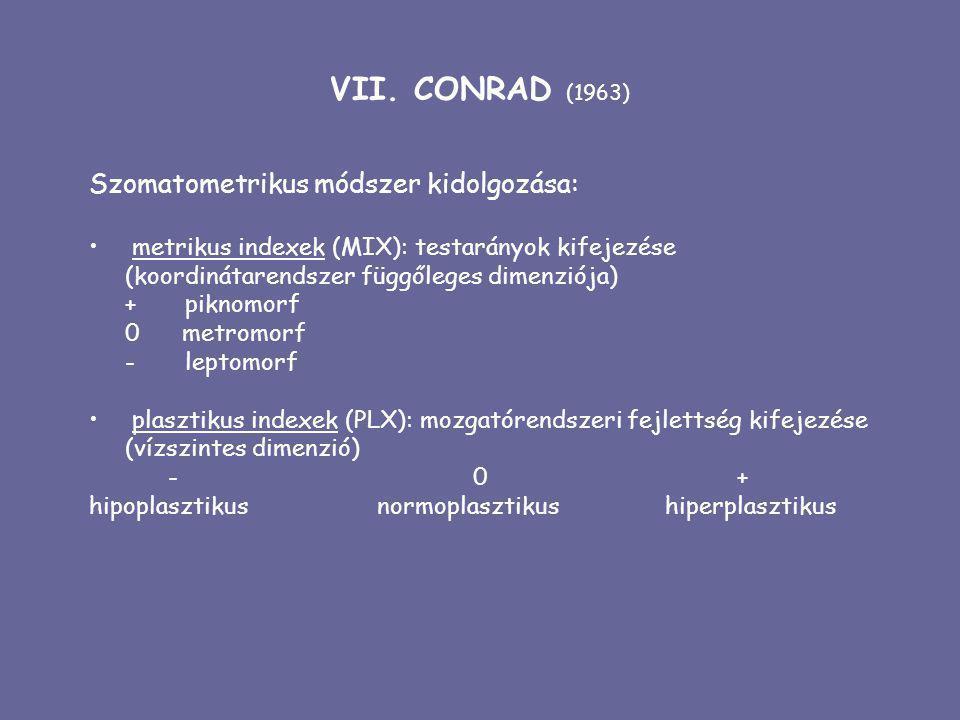 VII. CONRAD (1963) Szomatometrikus módszer kidolgozása: metrikus indexek (MIX): testarányok kifejezése (koordinátarendszer függőleges dimenziója) +pik