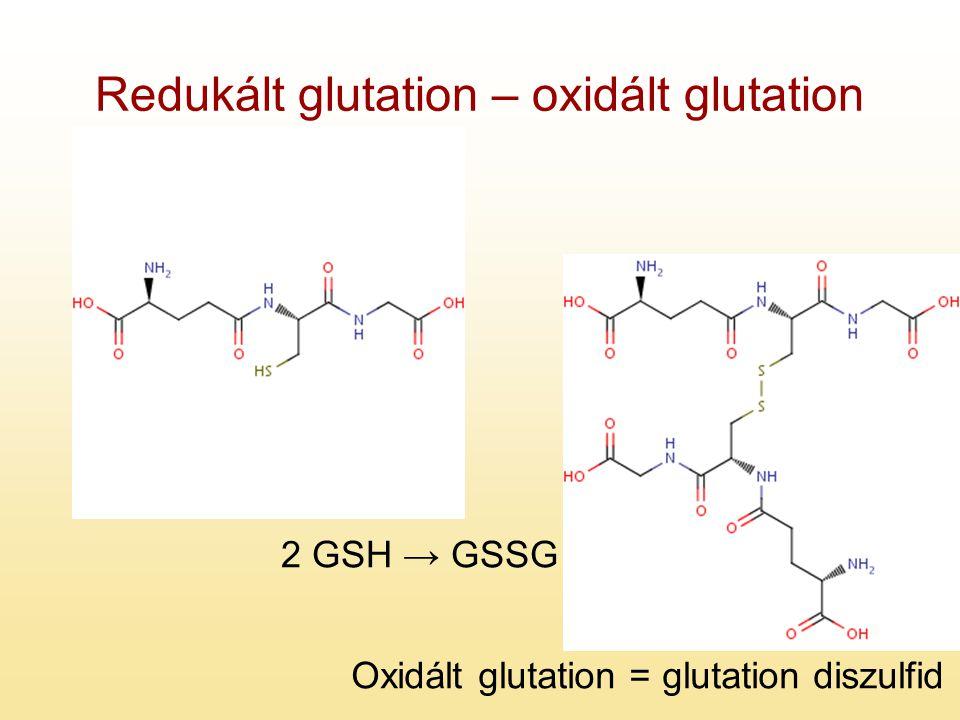 Redukált glutation – oxidált glutation 2 GSH → GSSG Oxidált glutation = glutation diszulfid