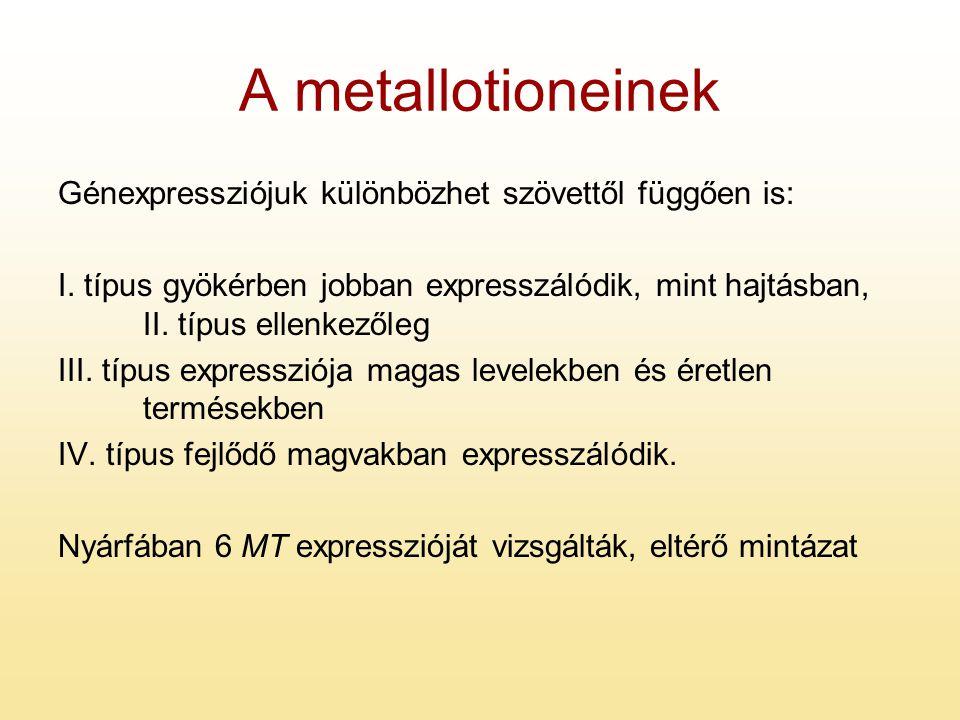 A metallotioneinek Génexpressziójuk különbözhet szövettől függően is: I. típus gyökérben jobban expresszálódik, mint hajtásban, II. típus ellenkezőleg
