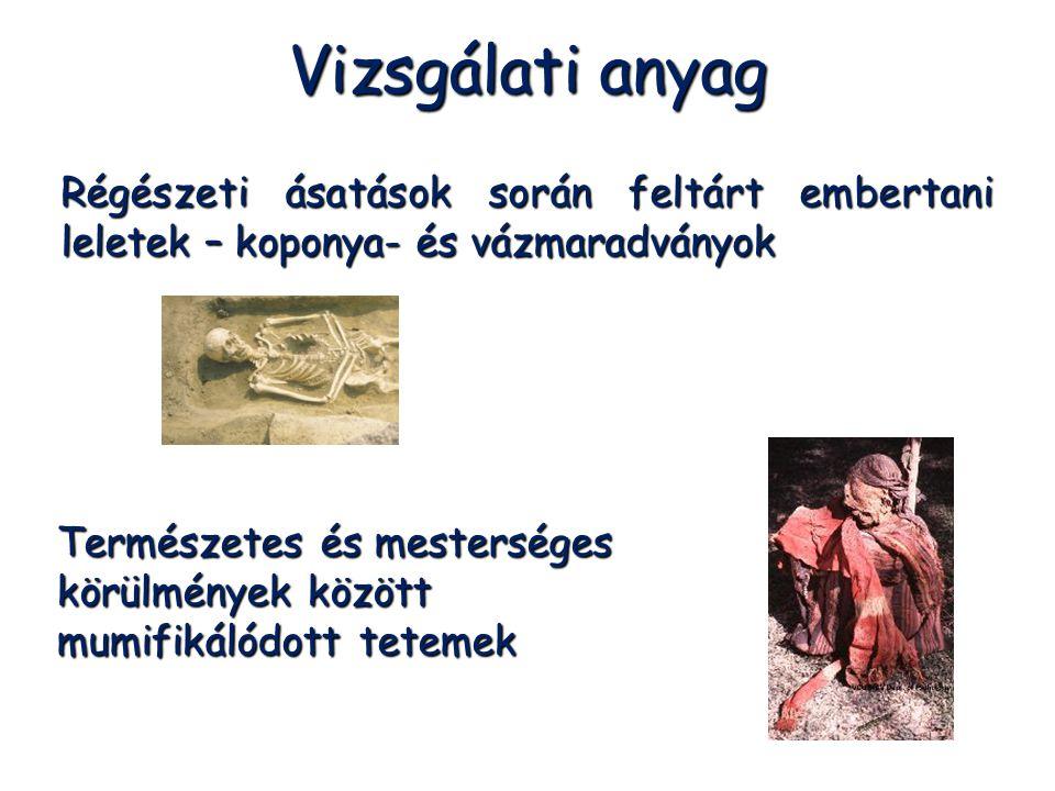 Régészeti ásatások során feltárt embertani leletek – koponya- és vázmaradványok Természetes és mesterséges körülmények között mumifikálódott tetemek V
