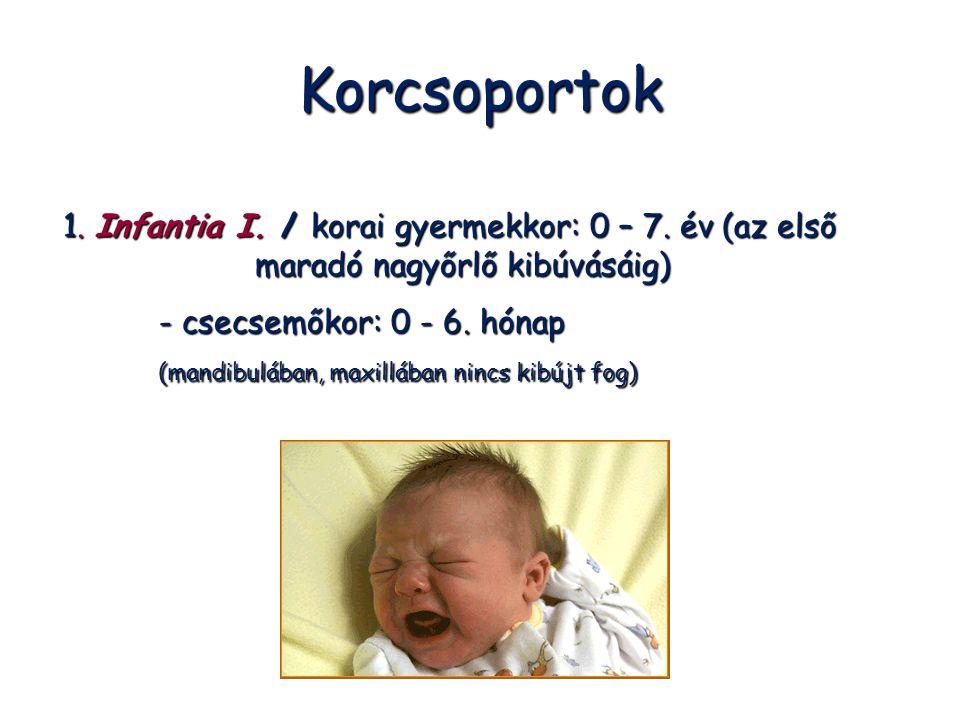 Korcsoportok 1. Infantia I. / korai gyermekkor: 0 – 7. év (az első maradó nagyőrlő kibúvásáig) - csecsemőkor: 0 - 6. hónap (mandibulában, maxillában n